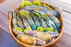 海鲜集合 图库摄影
