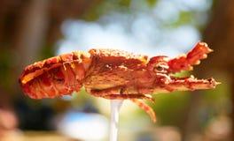 海鲜龙虾 免版税库存图片
