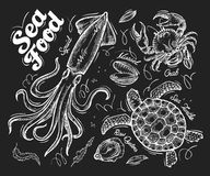 海鲜 乌龟的手拉的传染媒介剪影,螃蟹,淡菜,牡蛎,乌贼 库存例证