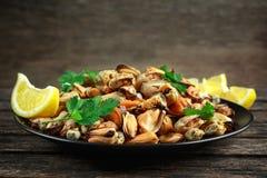 海鲜 蒸的Musseles开胃菜与洒在黑色的盘子服务的荷兰芹和柠檬juce 图库摄影