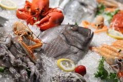 海鲜 免版税库存图片