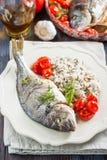 海鲷/Dorado烘烤了与蕃茄confit和米 免版税库存图片