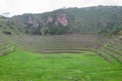 海鳗废墟在库斯科,秘鲁 库存照片