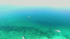 海鸟瞰图,顶视图,惊人的自然背景 水的颜色和美妙地明亮 与岩石的天蓝色的海滩 影视素材