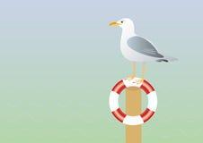 海鸥和lifebuoy传染媒介例证 库存图片