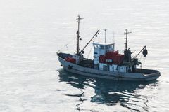 海鸥围拢的渔工艺剪影,在俄罗斯 免版税库存照片