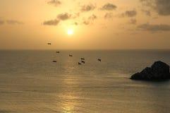 海鸥在飞行中在天际海 库存照片