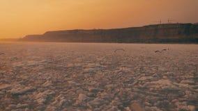 海鸥在冻海洋的天空盘旋在日落 慢的行动 Droneshot 股票视频