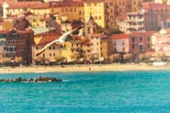 海鸥飞行和意大利镇在背景中 免版税库存照片
