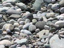 海鹅卵石纹理 免版税库存照片
