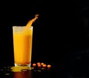 从海鼠李的汁液在一块玻璃用与下落的莓果,飞溅 库存照片