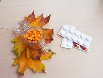 海鼠李莓果和秋叶,替代医学 库存照片