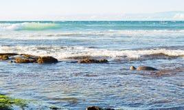 绿海龟在海洋 免版税库存照片
