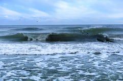 海,波浪,风 库存图片
