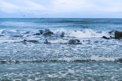 海,波浪,风 免版税库存照片