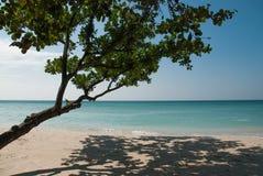 海滩。 免版税图库摄影