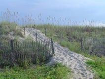 海滩与篱芭的沙丘路 图库摄影