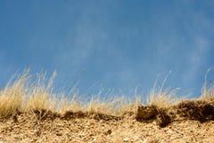 海滩侵蚀峭壁面孔 免版税图库摄影