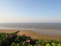 海滩全景在诺福克,英国 免版税库存照片