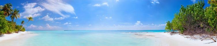 海滩全景在马尔代夫海岛Fulhadhoo的有白色含沙田园诗完善的海滩和海和曲线棕榈的 免版税图库摄影