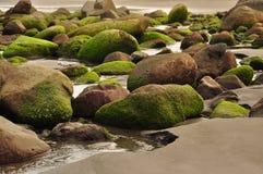 海滩冰砾 免版税库存图片