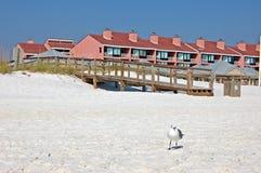 海滩前面 库存照片