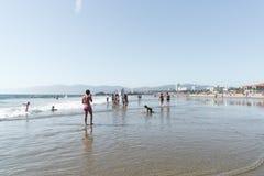 海滩加利福尼亚威尼斯 免版税图库摄影