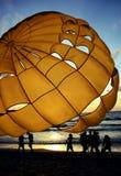 海滩活动 免版税库存图片