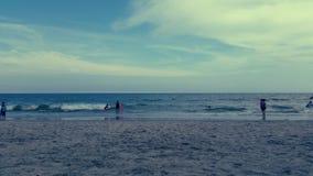 海滩南卡罗来纳州的加州桂 库存图片