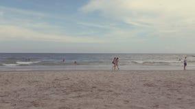 海滩南卡罗来纳州的加州桂 库存照片