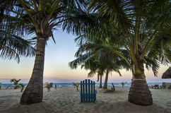 海滩叫 免版税库存图片
