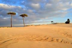 海滩和云彩 免版税库存图片