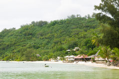 海滩和大厦与植被在博拉博拉岛 免版税库存图片