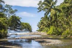 海滩和密林在哥斯达黎加 免版税图库摄影