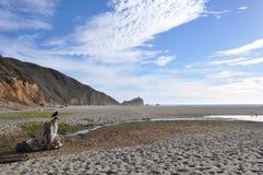 海滩和山的看法与鸟在前景 免版税库存图片