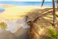 海滩和树的反射在水中 库存照片