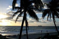 海洋和沙子和棕榈有船的 库存照片