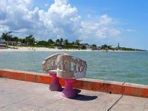 海滩和海洋全景在墨西哥Telchuc 免版税库存照片