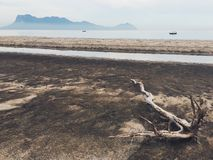 海滩和漂泊木头在沙捞越婆罗洲 免版税库存照片