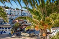 海滩和餐馆的看法通过枣椰子的叶子 库存照片
