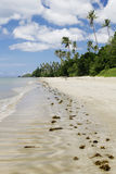海滩回归线 免版税库存图片