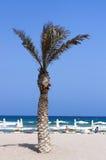 海滩圣胡安看法  免版税图库摄影