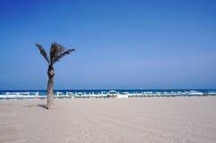 海滩圣胡安看法  库存图片