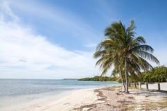 海滩在佛罗里达群岛 免版税库存图片