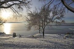 海滩在冬天 库存照片