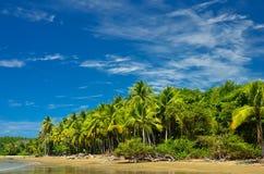 海滩在哥斯达黎加 库存照片