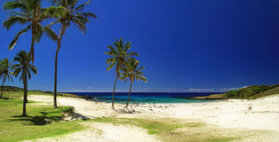 海滩在复活节岛 库存照片
