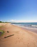 海滩在波罗的海的德国 免版税库存图片