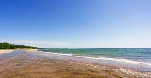 海滩在波罗的海的德国 免版税库存照片