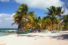 海滩在热带 Isla Saona,拉罗马纳,多米尼加 库存图片